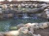 ornimental-pond-and-radius-rock-walls-321
