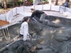 ornimental-pond-and-radius-rock-walls-039