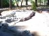 ornimental-pond-and-radius-rock-walls-051