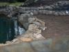 ornimental-pond-and-radius-rock-walls-316