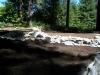 ornimental-pond-and-radius-rock-walls-243