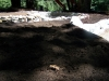ornimental-pond-and-radius-rock-walls-244