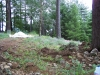 ornimental-pond-and-radius-rock-walls-257